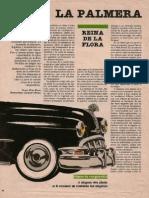 La palmera.pdf