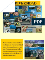 Arch 13074529052014 3464 Biodiversidad Resumen