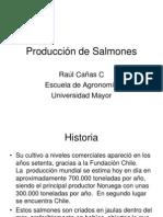 10 Producción de Salmones