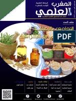 MSC Scientific-Morocco Fourth Issue