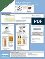SLB Cavings Morphology Poster