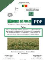 Mémoire Ibrahima FAYE
