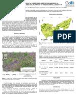 Painel Caracterização da cobertura florestal dos municípios da microrregião de Três Rios - RJ a partir do sensor orbital Landsat 8 TM. 2014