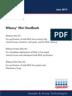 RNeasy Mini 0612