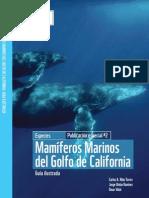 GuiÌ-a de MamiÌ-feros Marinos del Golfo de California (Ydejatuloguap@,soybiolog@)