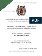 Diagnostico y Tratamiento de La Enfermedad Del Disco Intervertebral Toracolumbar en El Perro