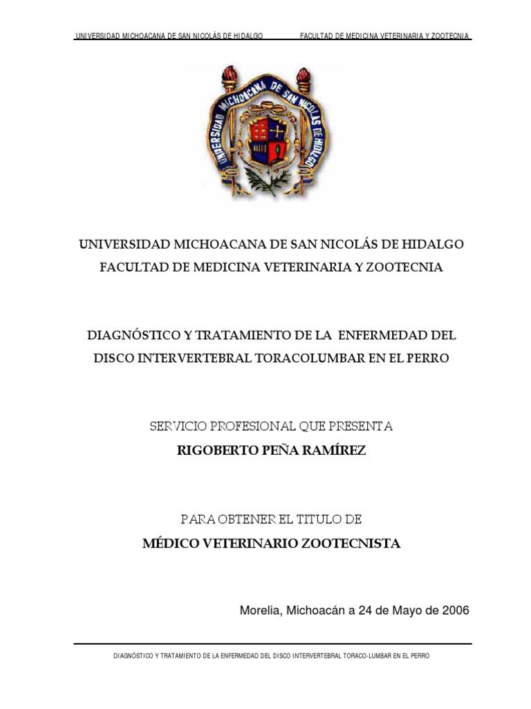 Diagnostico y Tratamiento de La Enfermedad Del Disco Intervertebral ...