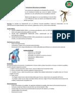 Contracturas Musculares y Lumbalgias 21-10-13
