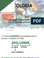 Bases de Ecologia
