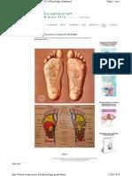 Www.acupression.fr Reflexologie-pieds