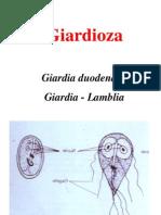 Curs 2-1 Giardia