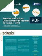 Pesquisa Nacional Em Gerenciamento de Processos de Negocio-2013