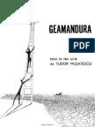 Tudor Musatescu - Geamandura