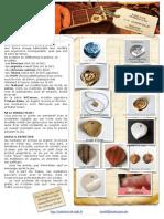 fiche notice 1.pdf