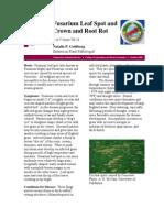 Fusarium Diseases