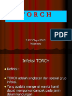 T O R C H.ppt
