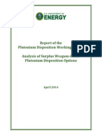 Report of the Plutonium Disposition Working Group
