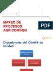 MAPEO PROCESOS ISO9001