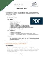 Practica Impuestos en Peru_2011