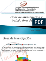 Linea de Investigacion y Trabajo Final de Carrera