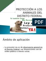 Ley de Protección a Los Animales Del