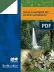 Informe Geoambiental Anzoategui 2011