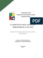 La Adopción en Chile - Falencias y Debilidades de La Ley 19.620 Victor Vergara Bularz Tesis U de Chile