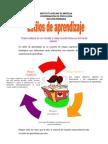 Articulo Estilos de Aprendizaje Primaria