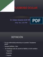 TTO Toxoplasmosis22