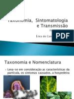 2 - Taxonomia e Sintomatologia