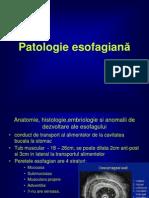 Patologie Esofagiana- Curs 1