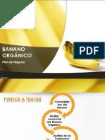 Banano PNppt