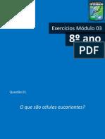 Exercícios Módulo 03_8ano