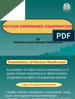Examination of Mucous Membranes