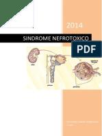 INTRODUCCION sindrome nefrotoxico