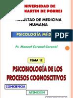 Psicobiología - Conciencia Atencion Percepcion.pptx