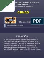1.Glaucoma Angulo Abierto