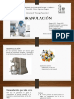 Presentación granulacion.pptx