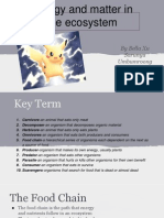 matter and energy presentation