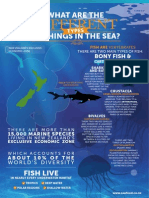 Different Types of Things in the Sea