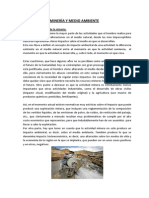 Minería y Medio Ambiente_TRABAJO