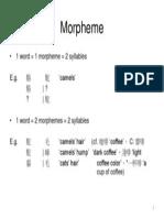 Morphology 8
