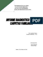 Informe Diagnostico de Las Carpetas Familiares