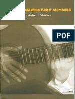 Piezas Esenciales Para Guitarra