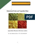 Dehydrated f v Plant Feasibility