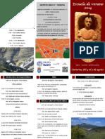 Tríptico Escuela de Verano.pdf