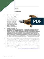 evaluacion45.pdf