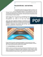 Industrialización del  Gas Natural.docx