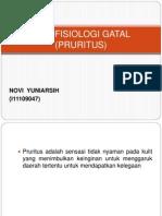 Patofisiologi Gatal (Pruritus)