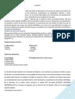 bombasss.pdf